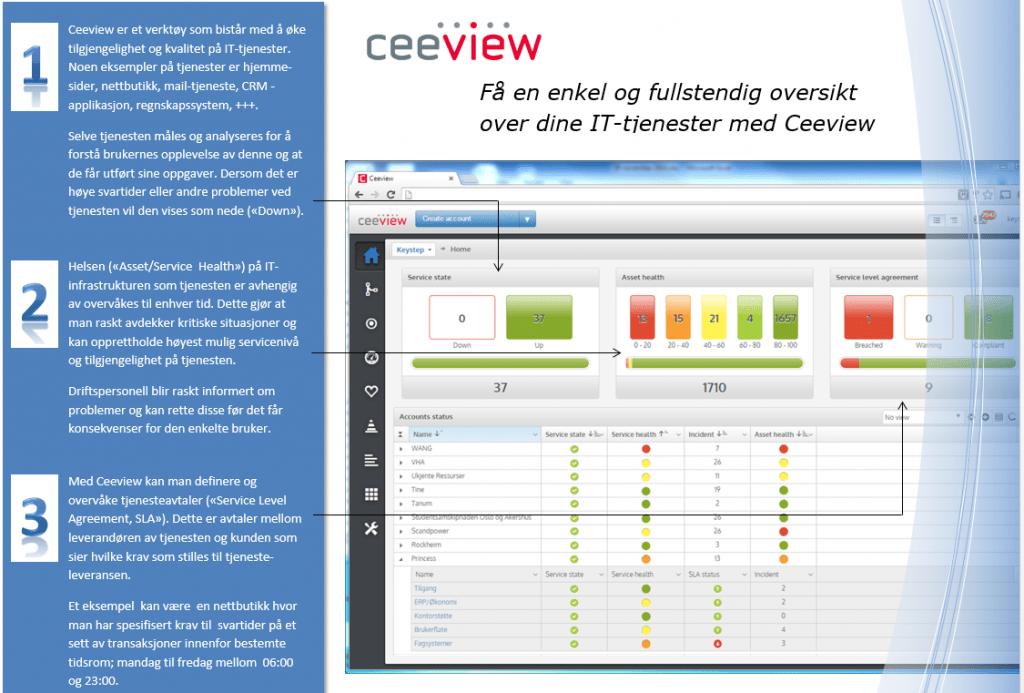 Ceeview oversikt 1